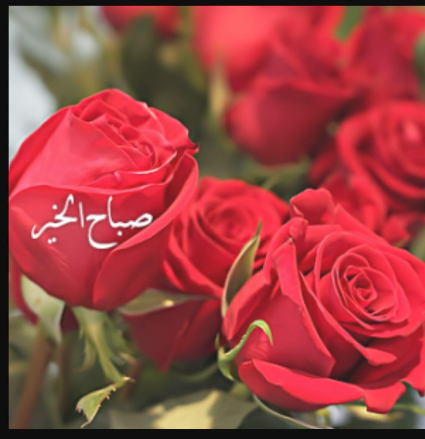 Image result for صور صباح الخير ورد