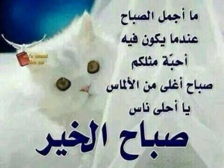 بالصور كلمات عن الصباح قصيره , صباح الخير 5315 7