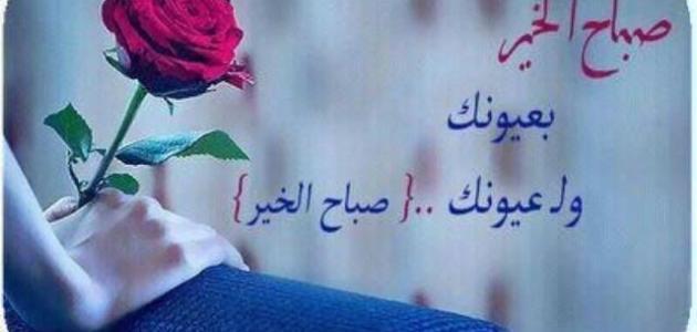 بالصور صباح الورد حبيبتي , اجمل صباح للاحباب 5319 3