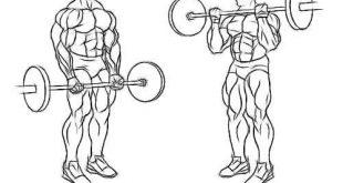 صورة تمرين العضلات , بناء عضلات سليمه