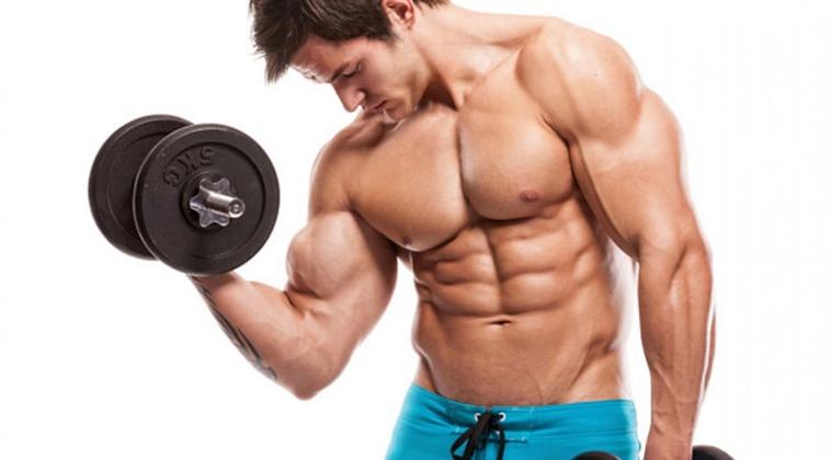 بالصور تمرين العضلات , بناء عضلات سليمه 5352 3