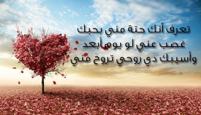 بالصور كلام عسل للحبيبة , اجمل الكلمات والعبارات العسل للحبيبة 5769 10