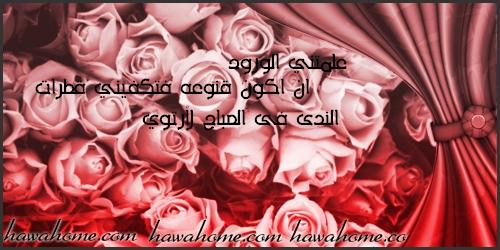 بالصور عبارات عن الورد , اجمل التعبيرات عن الورد 4750 2
