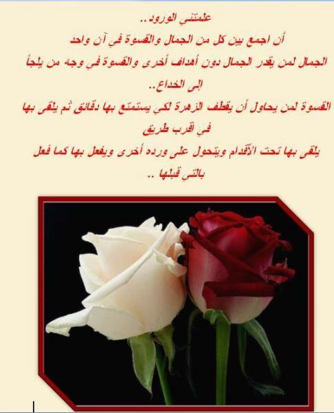 بالصور عبارات عن الورد , اجمل التعبيرات عن الورد 4750 3