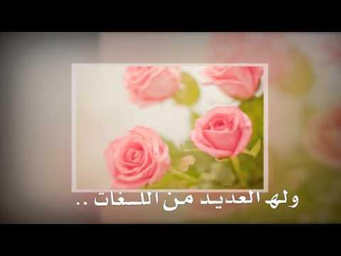بالصور عبارات عن الورد , اجمل التعبيرات عن الورد 4750 4