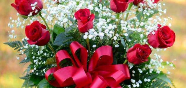 بالصور عبارات عن الورد , اجمل التعبيرات عن الورد 4750 8