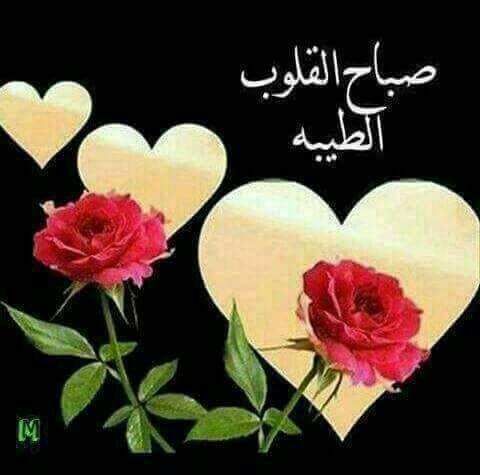 بالصور صباح العسل , اجمل رسائل الصباح 5335 2