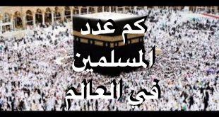 صور كم عدد المسلمين في العالم , المسلمين وعددهم في العالم
