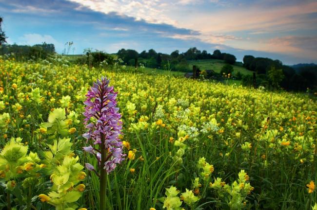 بالصور صور جمال الطبيعة , اجمل صور للطبيعه 5670 10