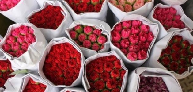 بالصور خواطر عن الورد , اجمل كلام عن الورد 5710 4
