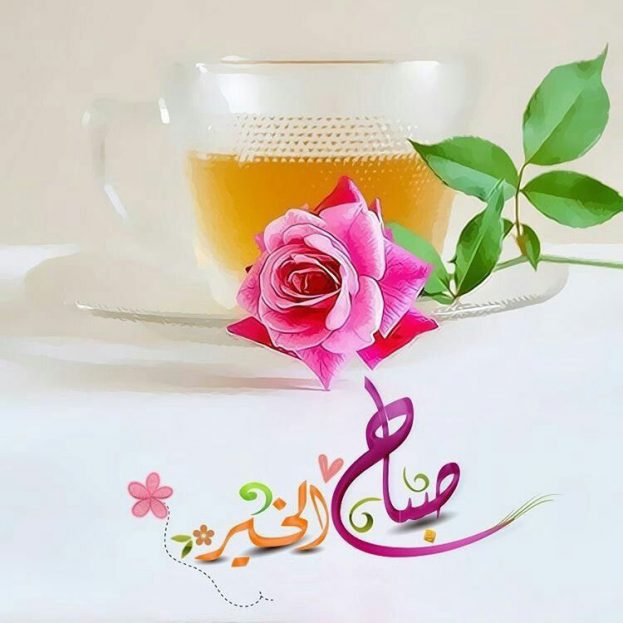 بالصور شعر صباح الخير حبيبتي , اجمل الصور مكتوب عليها اشعار لصباح الخير 5786 7