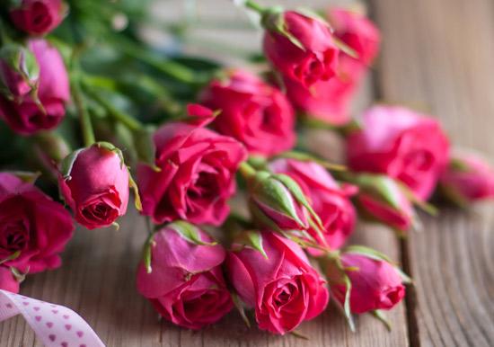 بالصور صور ورود حلوه , احلي الورود بانواعها المختلفة 5860 2