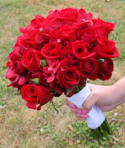 بالصور صور ورود حلوه , احلي الورود بانواعها المختلفة 5860 4
