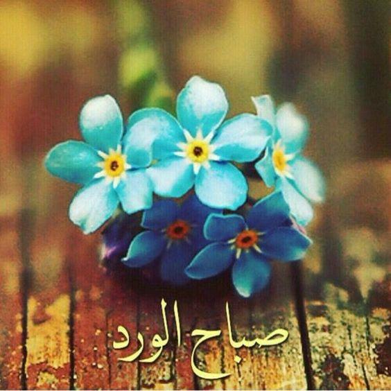 بالصور حبيبي صباح الخير , عبارات وتصميمات صباح الخير يا حبيبي 5899 9