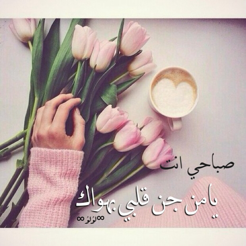 صورة كلمات صباح الخير للحبيب , احلي التصميمات لصباح الخير