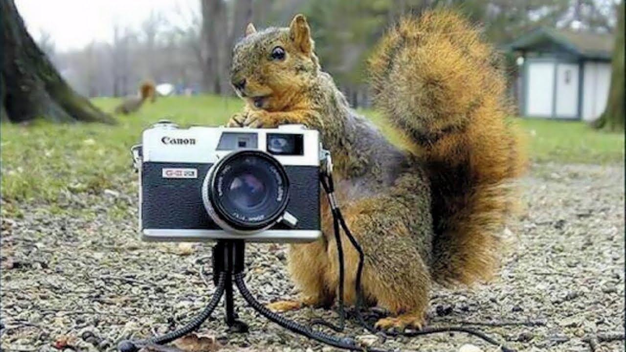 بالصور اغرب الصور في العالم , اجمل واغرب الصور في العالم 5983