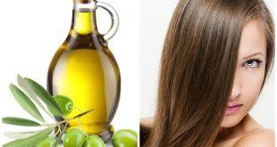 زيت الزيتون للشعر , فوائد زيت الزيتون الكثيرة للشعر