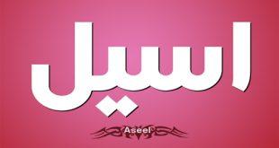 معنى اسم اسيل , اسيل معناه فى اللغة العربية