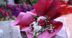 صورة زهور جميلة , اروع و اجمل الزهور