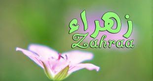 معنى اسم زهراء , اسم زهراء في القاموس