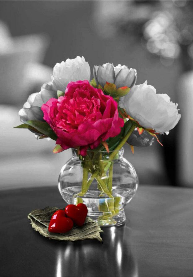 صور ورد حب افضل خلفيات الورود بلون الحب كيوت
