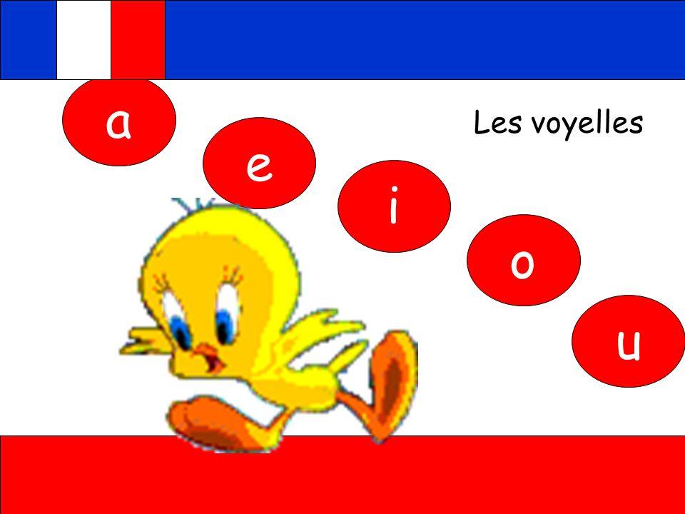 صورة تعلم اللغة الفرنسية , كيفية تعلم اللغة الفرنسية بسهولة