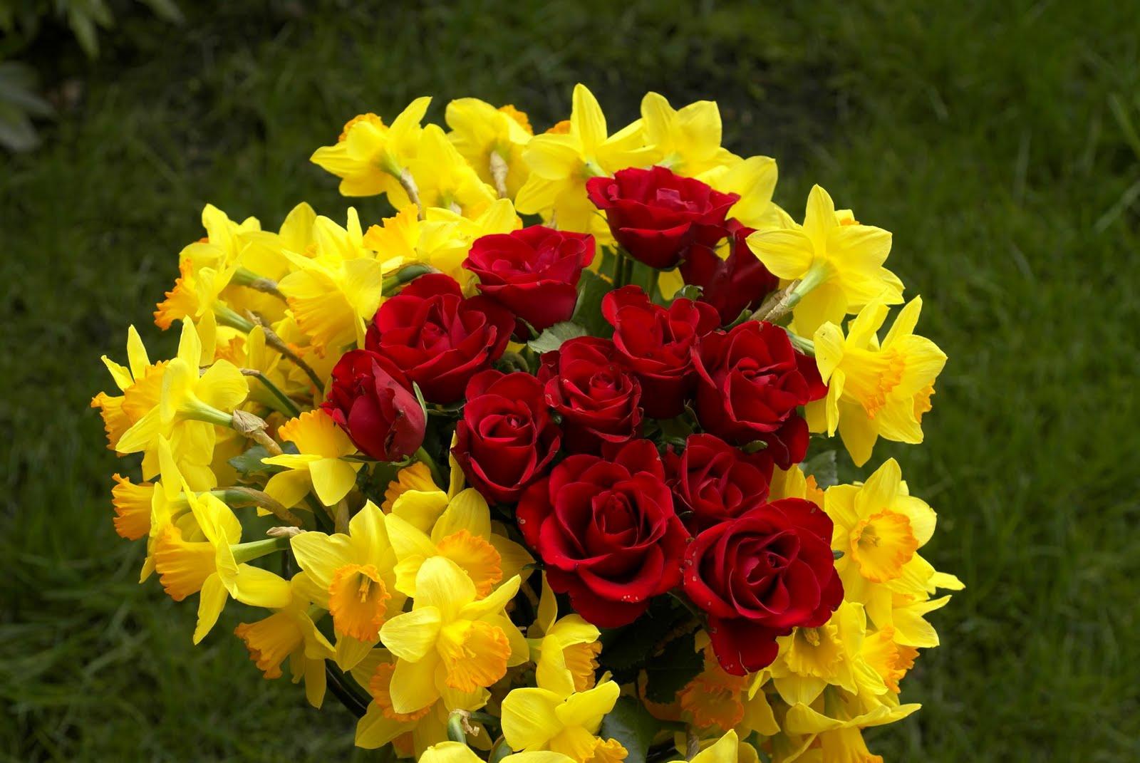احلى صور الورد