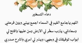 بالصور عبارات حب وغرام , الاحبه وعبارات اصدق للحب والغرام 2075 12 310x165