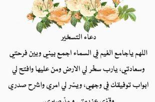 بالصور عبارات حب وغرام , الاحبه وعبارات اصدق للحب والغرام 2075 12 310x205