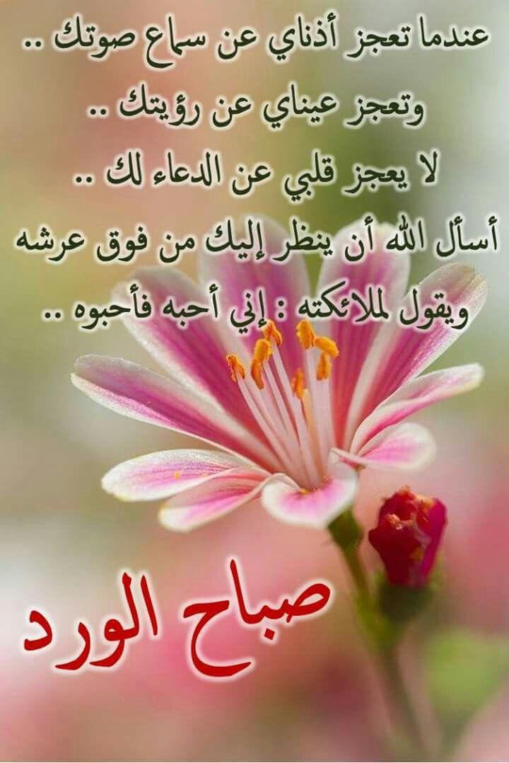 صورة عبارات حب وغرام , الاحبه وعبارات اصدق للحب والغرام 2075 7