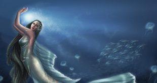 صورة صور عروسه البحر , حقيقه عروسه البحر وصور لها