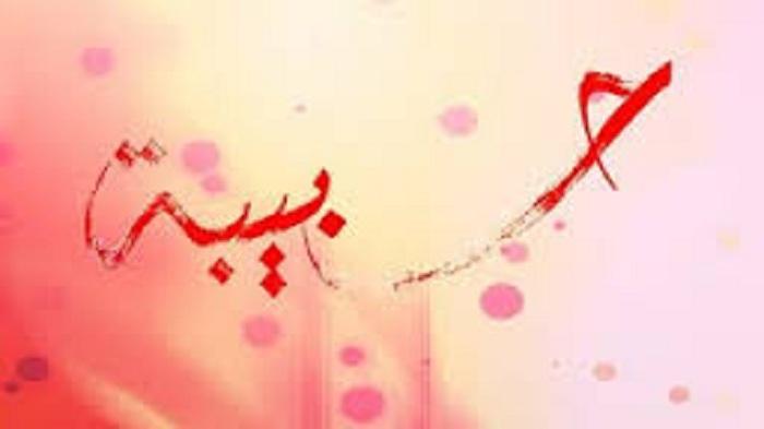 بالصور صور حبيبه , اجمل اسماء البنات وعلاقته بالحب 4159 5