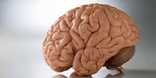 صورة اسباب الجلطة الدماغية , احمى نفسك من الجلطة