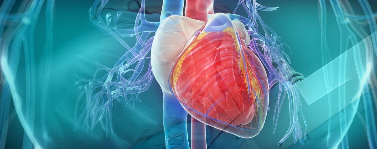 بالصور ارتفاع نبضات القلب , تعرف علي زياده ضربات القلب 11378 6