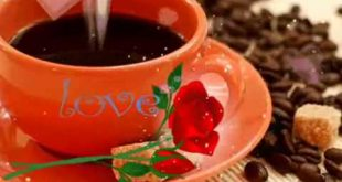 بالصور صباح الخير يا حبيبتي , اجمل الصباحات من الحبيب لحبيبته 3375 2 310x165