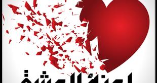 رواية ملوك تحت رحمة العشق , الروايات الرومانسية تقتحم الفيس بوك