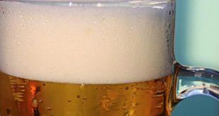 صور فوائد شراب الشعير للكلى , الشعير قاتل الحصوات
