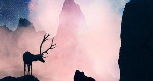 صور صور من تمبلر , اقتحام السوشيال ميديا للحياة