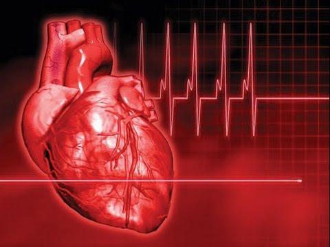 صور دقات القلب السليم , القلب المسؤل على النبض