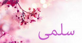 صورة دلع اسم سلمى , تعرف على اسم بنت عربى اصيل