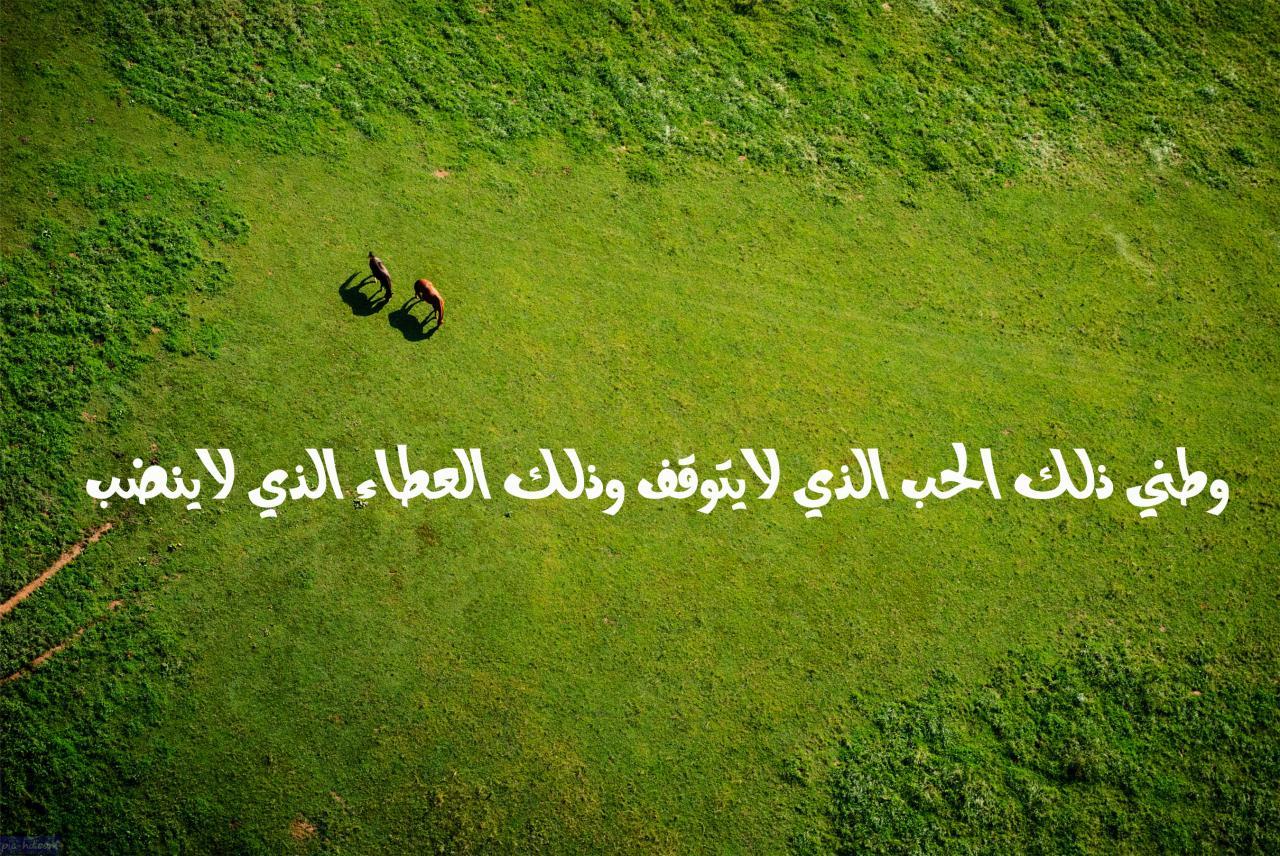 صورة قصيدة حبي لمملكتي , اجمل كلمات لقصيده حبي لمملكتى
