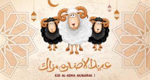 صورة صور عيد الاضجي , اجمل الصور لعيد الاضحي