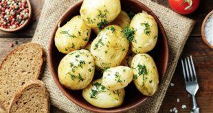 صورة هل البطاطس المسلوقة تزيد الوزن , معلومات عن البطاطس هتبهرك