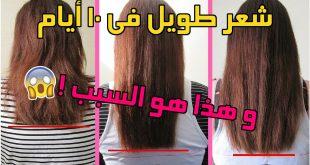 صورة لتطويل شعر الاطفال مجرب , اروع وصفه مجربه لتطويل الشعر فى وقت قصير جدا