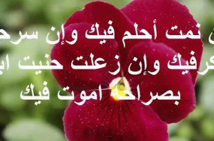 صورة احسن رسائل حب , اجمل رسائل حب وغرام