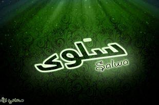 صورة معنى اسم سلوى , تعرف على التفسير الصحيح لاسم سلوى