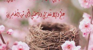 صورة صور دينية جميلة , اشيك وارق الصور الدينية المميزة