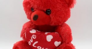 صورة دبدوب احمر , من اشيك هدايا الفلانتين الموجودة معانا ❤️