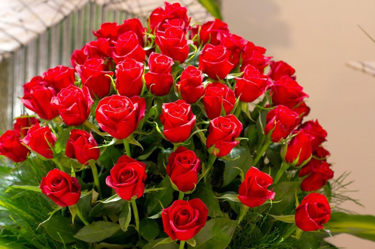 صورة اجمل صور الورد , اشكال جميلة ومتميزة من الورود