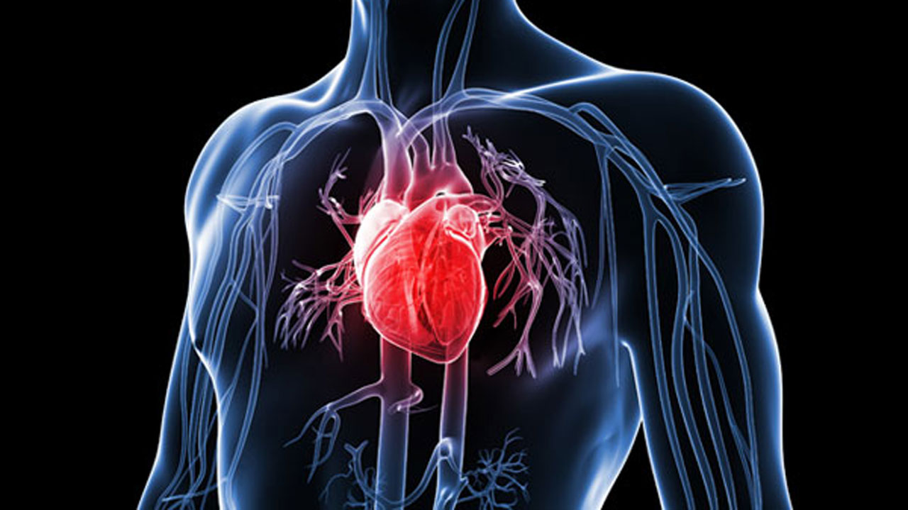 صورة اعراض امراض القلب , مسببات وظهور مرض القلب 624 5